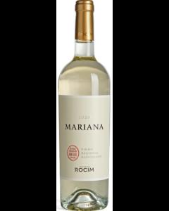 Mariana Branco 2020