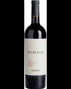 Mariana Tinto 2020