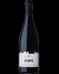 Pape Tinto 2015