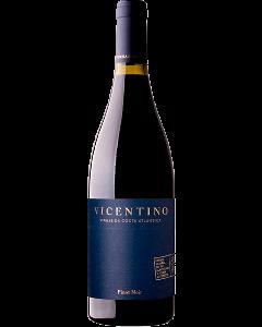 Vicentino Pinot Noir Tinto 2016